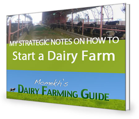 Dairy Farming Guide by Momekh eBook cover