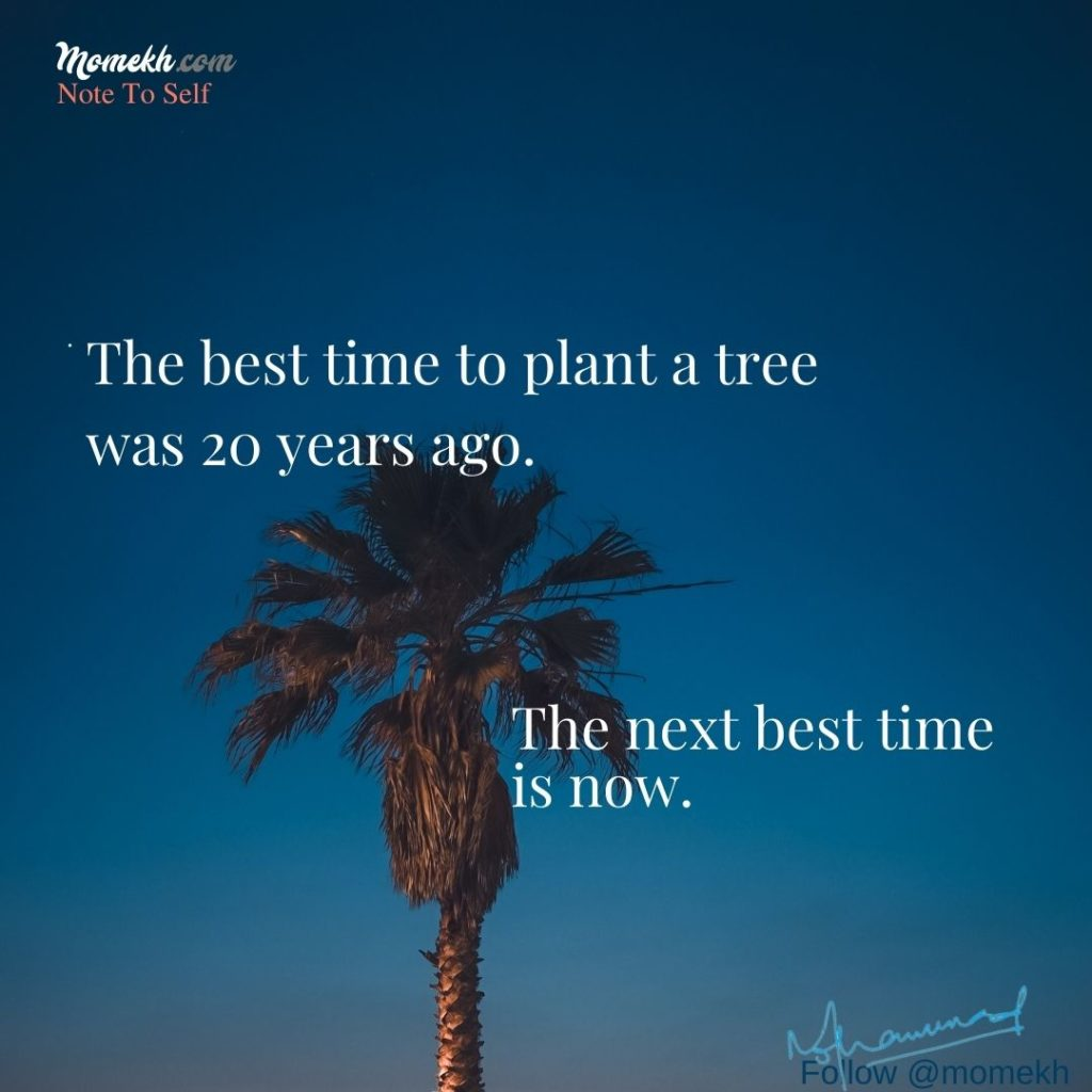 The best time to plant a tree was 20 years ago. The next best time is now.